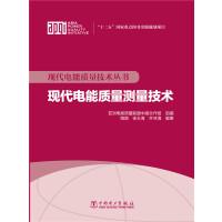 现代电能质量技术丛书 现代电能质量测量技术