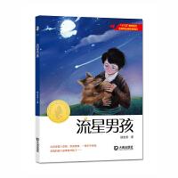 大白鲸原创幻想儿童文学优秀作品・流星男孩