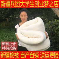 6斤一级新疆长绒棉絮被子冬被芯春秋被单人床垫被褥子全棉被特价