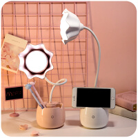 少女心led台灯卧室ins书桌护眼床头宿舍学生用充电插电北欧两用小