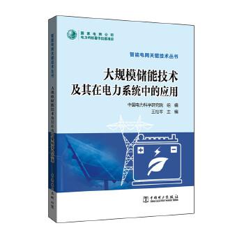 智能电网关键技术丛书 大规模储能技术及其在电力系统中的应用 储能技术/智能电网