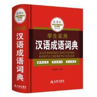 学生实用汉语成语词典小学升字典词典