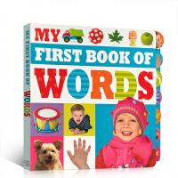 英文原版 My First Book of Words 我的首本书 儿童入门初级绘读物 亲子阅读学习英语启蒙纸板书本句