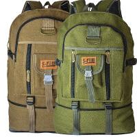 韩版超大容量双肩帆布包 电脑包 旅行背包男女潮包80L大号登山包