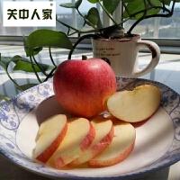 【陕西乾县馆】关中人家 10斤陕西红富士苹果水果吃的脆甜大新鲜