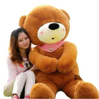 毛绒玩具泰迪熊公仔毛毛熊大号狗熊抱抱熊大熊生日礼物