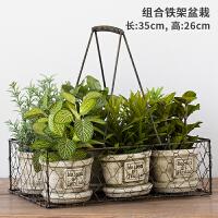 仿真植物装饰北欧花卉盆栽 绿植 室内 盆栽摆件绿萝花盆假花摆件