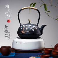 电陶炉煮茶器耐高温玻璃烧水壶功夫茶具铁壶迷你小型光波茶炉