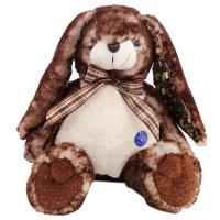百变公仔儿童小兔子玩偶毛绒玩具娃娃生日礼物 咖啡兔