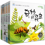 自然科学探索绘本全套5本奇妙的昆虫小水滴历险记风是怎样形成的石头的故事神奇的植物大自然动物故事书儿童