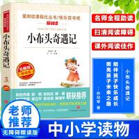 小布头奇遇记 新课标推荐中国儿童文学世界名著青少年版 7-9-12岁三四五六七年级中小学生课外阅读物畅销图书籍