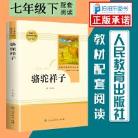 骆驼祥子 人民教育出版社七年级下册必读书目人教版原著无删减