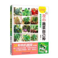 放心蔬菜自己种蔬菜种植技术书籍28种有机蔬菜养护彩图解阳台种菜大棚蔬菜种植技术书籍大全新手农业种植白菜萝卜豌豆辣椒黄瓜