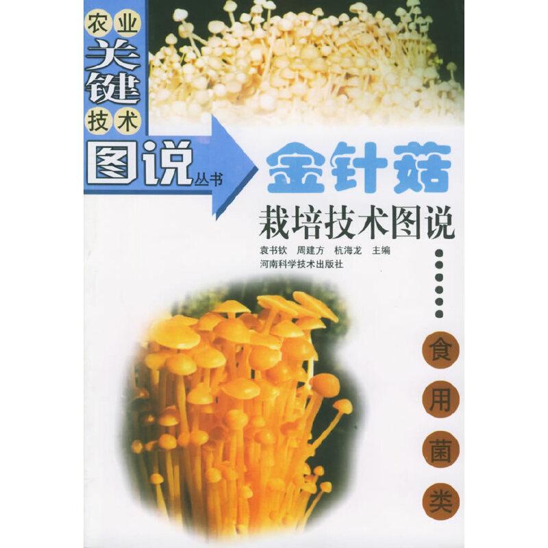 金针菇栽培技术图说(食用菌类)——农业关键技术图说丛书·食用菌类