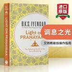 调息之光 英文原版 Light on Pranayama 艾扬格 Iyengar 瑜伽经典 呼吸之道 运动塑身英文版现