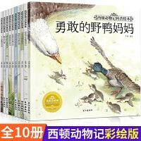 西顿动物记科普绘本全套10册西顿野生动物故事集儿童绘本3 6岁经典绘本排行榜亲子读物幼儿早教图画睡前故事书籍6-7-10