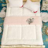 冬季加厚保暖床垫单人床褥子双人1.5m床冬天垫子榻榻米