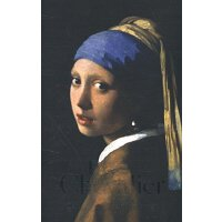 Girl With a Pearl Earring 戴珍珠耳环的少女 英文原版