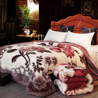 毛毯被子双层加厚冬季双人毯子 单人学生宿舍盖毯珊瑚绒毯定制! 200x230cm 9斤