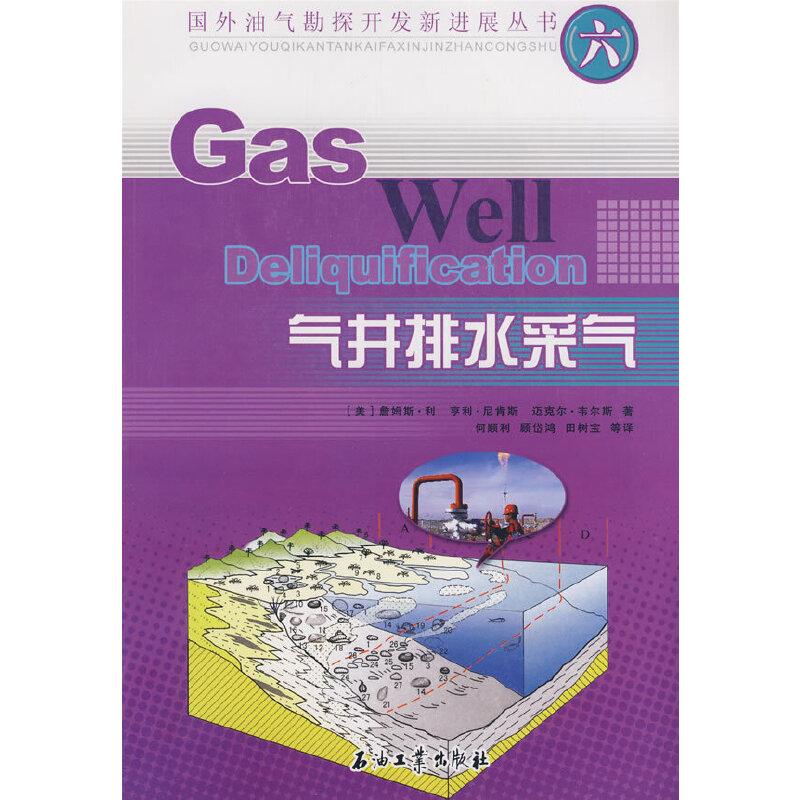 国外油气勘探开发新进展丛书(六) 气井排水采气