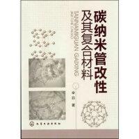 碳纳米管改性及其复合材料 辛菲 化学工业出版社 9787122145260