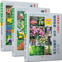 共3册 景观植物大图鉴123 木本花卉760种/观赏树木680种/藤蔓植物竹类棕榈类626种 园林景区盆栽图鉴书籍 广东