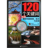 120���P�I�~精通�z影���D原理形式�c��拍黑冰�z影 �子工�I出版社9787121160875【�o�n售后】