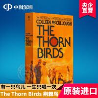 现货荆棘鸟 英文原版小说The Thorn Birds Colleen MeCullough 考琳.麦卡洛 经典英语热门
