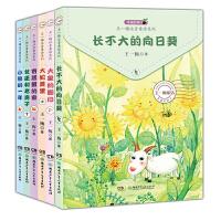 全6册幸福的种子全新正版王一梅注音童话系列绘本长不大的向日葵 大象的脚印6-12岁注音童话故事书幼儿