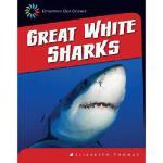 【预订】Great White Sharks9781624314834