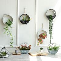 【支持礼品卡】墙壁装饰品挂件花盆墙面上创意家居北欧房间卧室餐厅客厅墙饰植物m0e