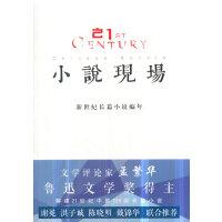 小说现场――新世纪长篇小说编年