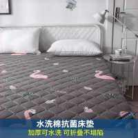 垫子双人床床垫子床垫椰棕垫卧室偏硬90脊椎单人床软硬两用宿舍床