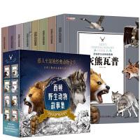 全集8册西顿动物记野生故事 三年级课外书读少儿图书 8-10-12-15岁儿童文学励志沈石溪动物小说系列 小学生四五六年