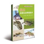 鳜鱼高效生态养殖技术