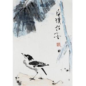 王守璞  《鸟》       a270