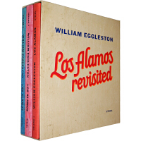 WILLIAM EGGLESTON : LOS ALAMOS REV #(9783869305325)