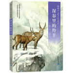 椋鸠十动物小说 爱藏本05 深谷里的羚羊