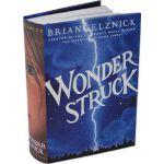 【现货】英文原版 寂静中的惊奇 Wonderstruck 造梦的雨果作者 朱丽安・摩尔主演同名电影 精美素描画插图 1