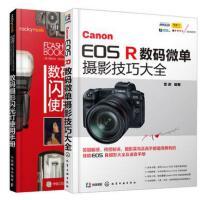 数码摄影闪光灯使用手册+Canon EOS R数码微单摄影技巧大全共2本 EOS R实拍技巧 佳能相机拍照指导 闪光灯