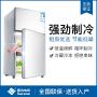 西泠(Serene)冰箱 小冰箱 双门迷你家用小型电冰箱 冷藏冷冻冰箱 BCD-43A118
