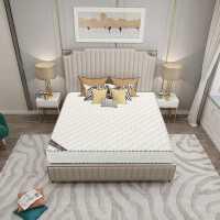 欧罗天骄椰棕床垫天然环保椰棕1.5米1.8米榻榻米护脊床垫