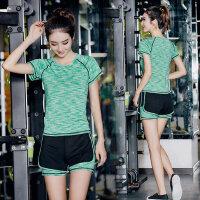 女士显瘦速干衣专业健身房跑步服 新款健身瑜伽服女运动套装短袖T恤短裤