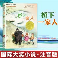 LZ国际大奖小说 桥下一家人 注音版 小学生课外阅读书籍 一年级二年级必读儿童文学三四儿童读物 6-7-8-10-12