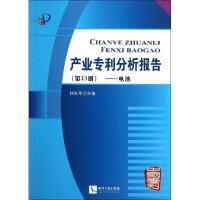 产业专利分析报告(23)电池 知识产权出版社