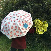 韩国太阳伞简约防晒黑胶折叠学生软妹小清新便携夏季遮阳伞晴雨伞