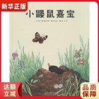 小�B鼠嘉��,河北教育出版社,9787543477025【新�A��店,正版�F�】