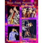 【预订】Boys From Houston III: Groove-In