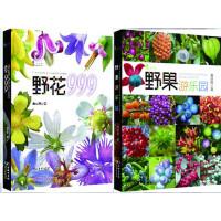 正版 野花999+野果游乐园 (套装2册)黄丽锦著 商务印书馆