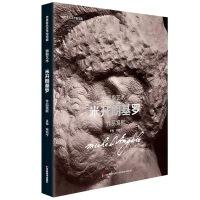 世界著名美术馆馆藏 拥抱艺术 米开朗基罗 作品赏析